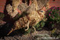 Strohfiguren_Krokau-0088
