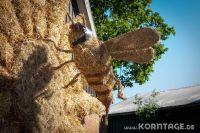 Strohfiguren_Krokau-0089