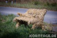 krummbek-3389